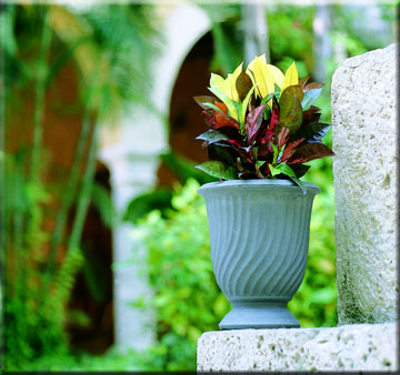 Armeria provence urn containers traditional - Planters contact provence ...